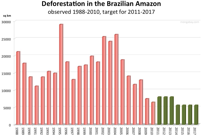 Kwetsbare Leven In Het Amazonegebied Bedreigd Door